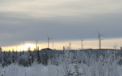 Red Rock Power Makes Move into European Market with Swedish Wind Farm Acquisition